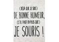 T shirt homme humour drôle rigolo avec jeux de mots bonne humeur manche courte blanc chiné France