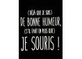 T shirt femme humour drôle rigolo avec jeux de mots manche courte noir col V France